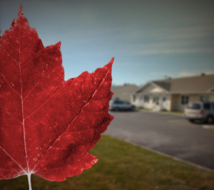 Maple leaf and houses
